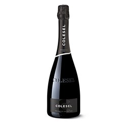 Prosecco Doc Extra Dry - Colesel